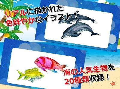 みんなの海の生き物カード 01