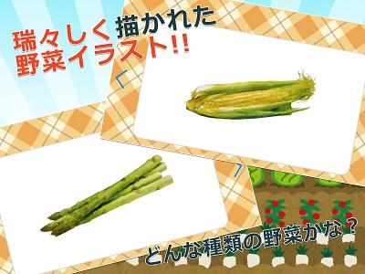 みんなの野菜カード 01
